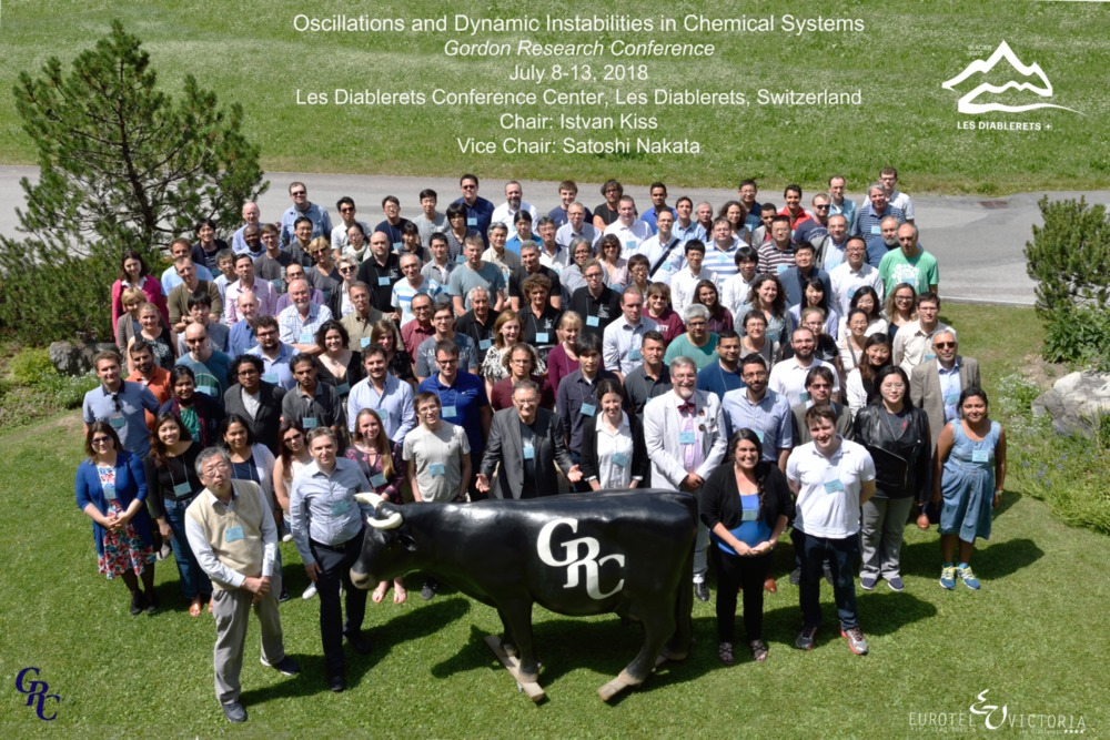 2018 Gordon Research Conferences: Oscillations & Dynamic Instability In Chemical Systems - Group